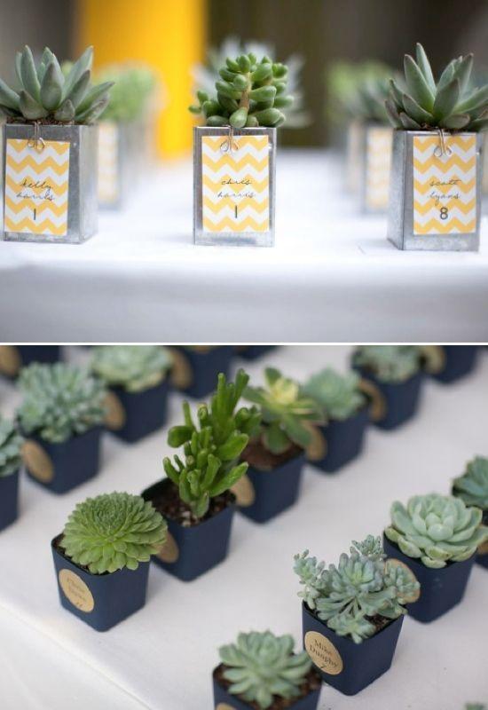 15 De bästa kaktusbröllopsidéerna du kan kopiera (med bilder.
