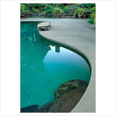 Pin av Teri P på Curves, beautiful curves    Pool, moderna pooler.