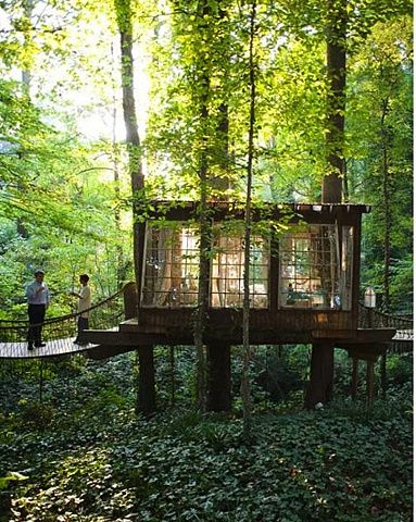Super-Awesome, Minimal-Impact Tree House / Tiny House |  Trähus .