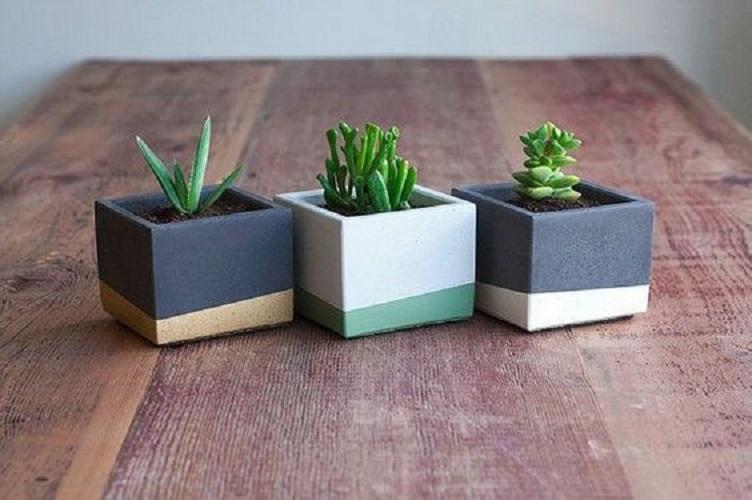 15 kreativa DIY-betongplanteringsidéer som heminredning.