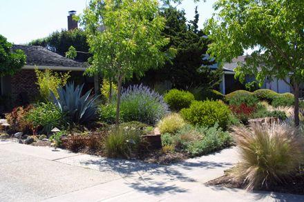 Hållbar trädgårdsdesign med lågt vatten i San Jose, Kalifornien.