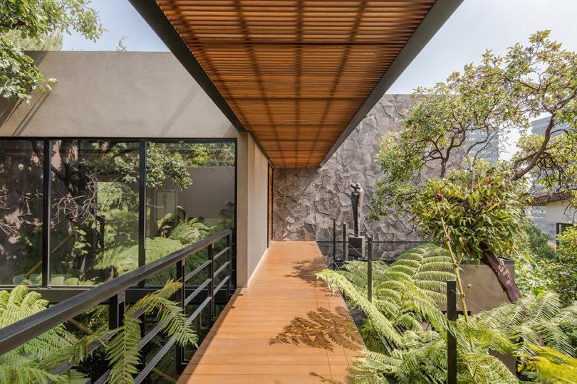 Los Helechos House är en modern oas i Mexiko Ci