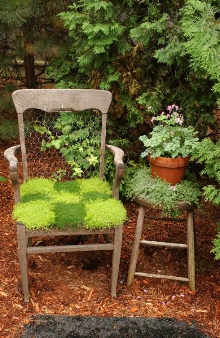 37 Coola vårmossor utomhus- och inomhusidéer |  Trädgård.
