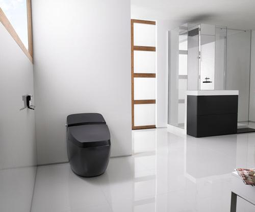 Den snygga toaletten från Roca är också bra