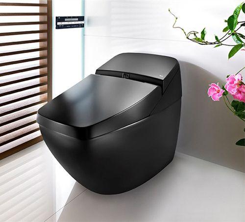 Elegant toalett från Roca är också högteknologisk    Svart toalett, modern toalett.