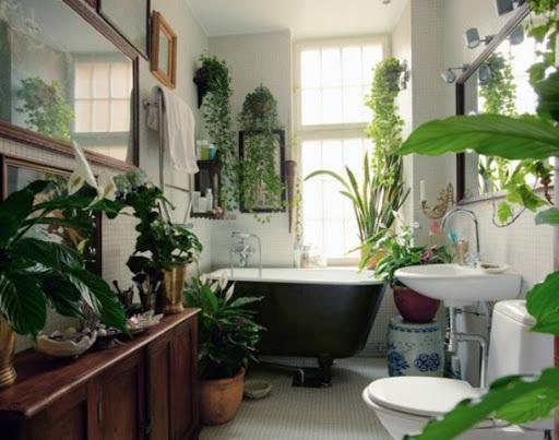 Badrumsdesignidéer med växter och blommor  Fresh Home Bl
