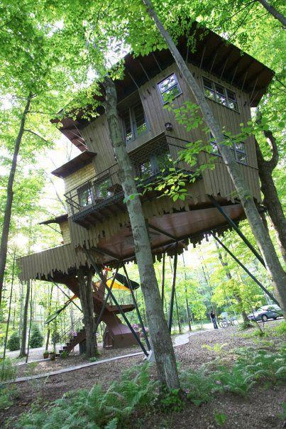 Winvian, Hartford, CT: Five Star Alliance |  Unika stugor, träd.
