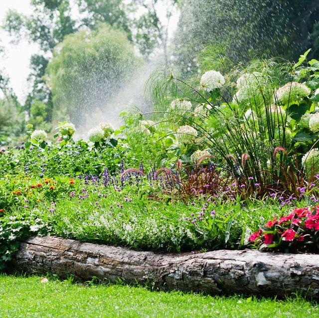 15 bästa idéer för trädgårdskantning - kreativ och billig trädgårdskant.