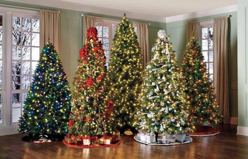 Flera julgranar i ett rum? ... en dag    Semester .