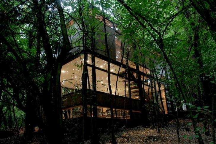Apollo 11-hus med låg påverkan landar tyst i skogen som ett tyst.