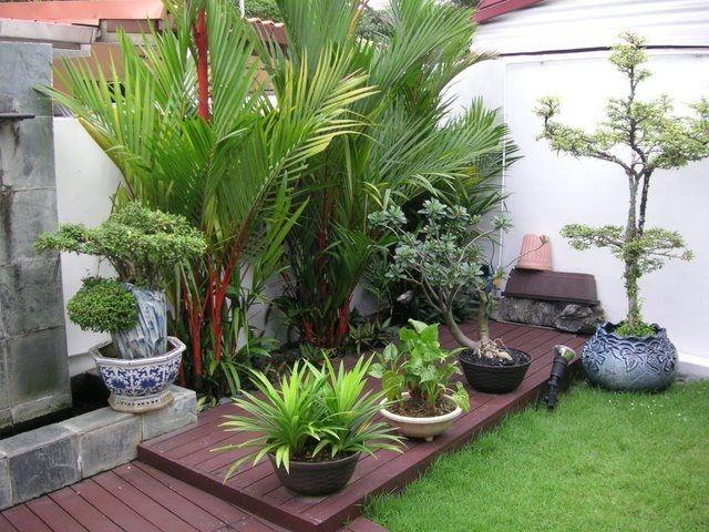 20 vackert kreativa trädgårdsidéer för trädgården    Liten bakgård.