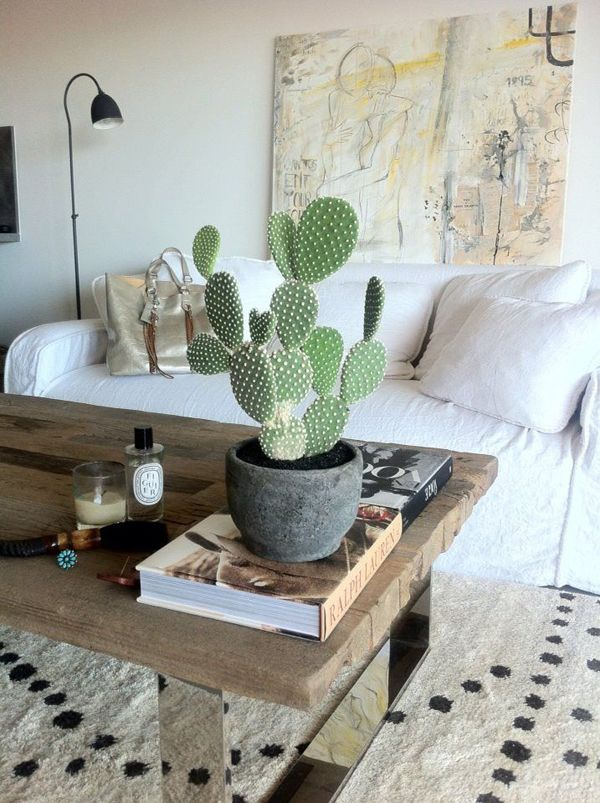 Bästa Cactus temakläder