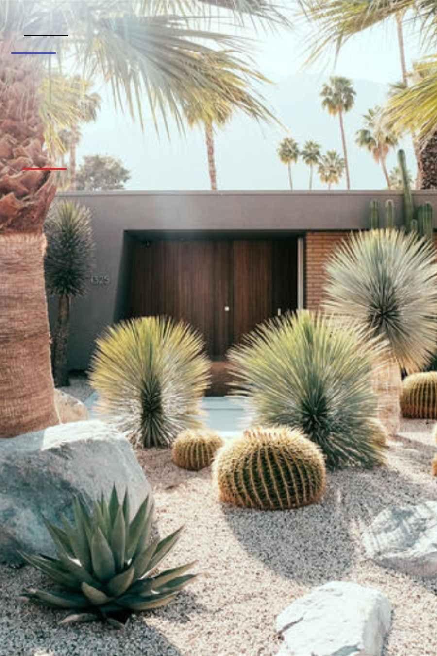Desert Garden designidéer