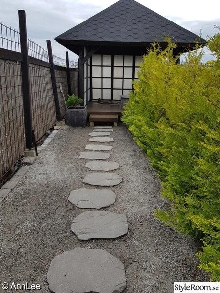 Hus runt japansk trädgård