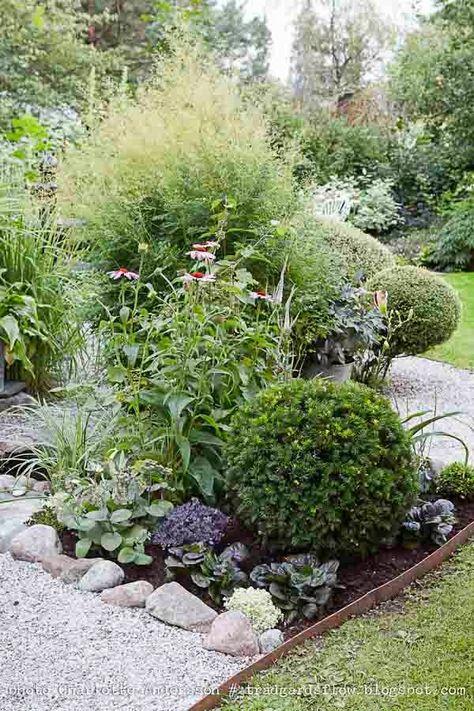 Trädgårdsanläggning med lågt vatten