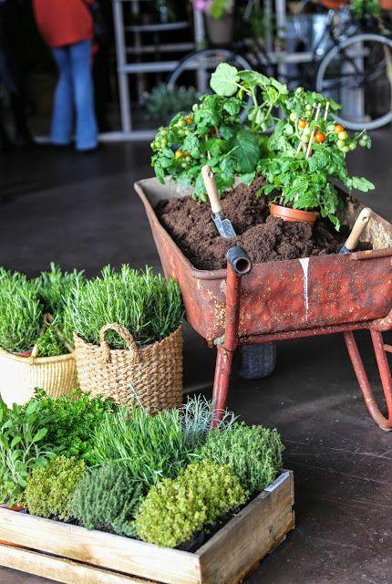Trädgårdsinredningstrender 2020
